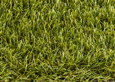 Royal Grass ® Sense